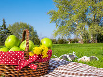Picnic basket and blanket Stock Images