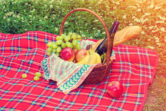Picnic basket on the blanket Stock Photos
