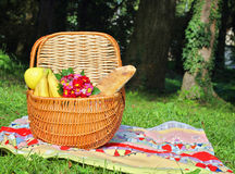 Picnic basket and blanket on green grass in park, nature. Stock Photos