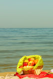 Picnic basket on blanket near sea. Relaxation during summertime concept. Picnic basket with fruit on red blanket near sea Royalty Free Stock Photos