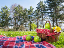 Picnic basket and blanket Royalty Free Stock Photos