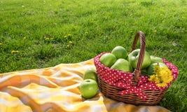 Picnic Blanket Amp Basket Stock Photo Image Of Basket