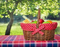 Picnic basket and blanket Stock Photography