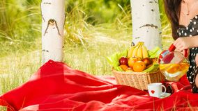 Picnic basket on blanket in woods Royalty Free Stock Photo