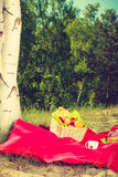 Picnic basket on blanket in woods Royalty Free Stock Photography