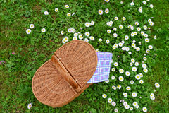 Picnic basket and blue white checkered napkin on lawn with daisy. Flowers. Top view. Weekend break concept Stock Photo