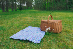 Picnic basket and blue white checkered napkin on lawn in park. Weekend break concept Stock Image