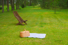 Picnic basket with blue white napkin in park. Picnic basket with blue white checkered napkin on grass. Summertime park in the background Royalty Free Stock Image