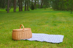Picnic basket with blue white napkin in park. Picnic basket with blue white checkered napkin on grass. Summertime park lawn in the background Royalty Free Stock Image