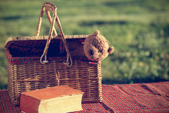 Picnic basket and book Stock Photos