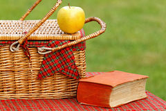 Picnic basket and book Royalty Free Stock Photos