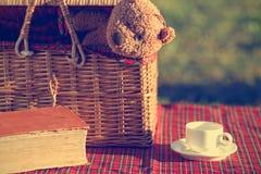 Picnic basket and book Royalty Free Stock Photos