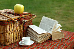 Picnic basket and book Royalty Free Stock Photography