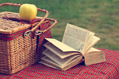 Picnic basket and book Royalty Free Stock Images