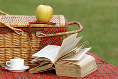 Picnic basket and book Stock Photo