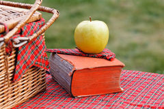 Picnic basket and book Royalty Free Stock Image