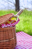 Picnic basket with bottle of wine Royalty Free Stock Photo