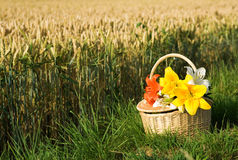 Picnic basket with bunch of flowers Royalty Free Stock Image