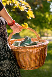 Picnic basket carried in a young lady's hands Stock Images