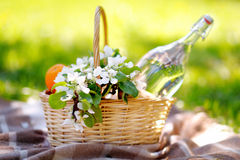 Picnic basket close up. Picnic basket with fruits, flowers and water in the glass bottle Stock Photography