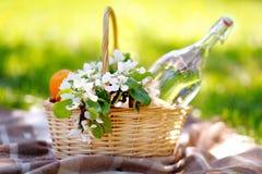 Picnic basket close up Stock Photography
