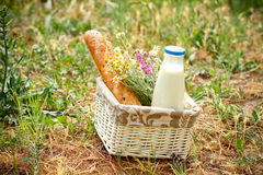 Picnic basket with daisies, bread and milk in the open air Royalty Free Stock Photography