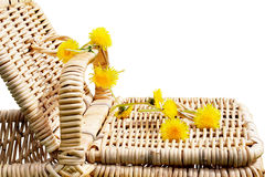 Picnic basket with dandelions Stock Image