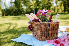 Picnic basket with drinks, food and flowers on the grass. Closeup of picnic basket with drinks, food and flowers on the grass Royalty Free Stock Image