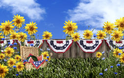 Picnic Basket Flower Garden. A wicker picnic basket filled with whole and sliced watermelon in garden with sunflowers and blue asters. The rustic wood fence is Stock Images