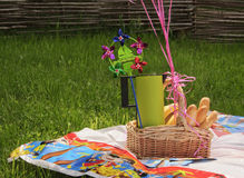 Picnic basket. And food on the grass Stock Image