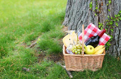 Picnic basket with food on grass Stock Images