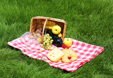 Picnic basket with food on grass Royalty Free Stock Image