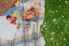 Picnic basket and food. Green meadow with flowers. Spring in the Netherlands. Holidays. View from above. royalty free stock photos