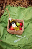 Picnic basket with food on green sunny lawn. stock photos