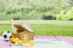 Picnic basket with food on meadow Royalty Free Stock Photos