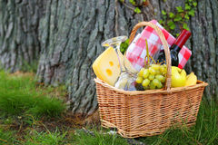 Picnic basket with food. Near a tree Stock Photography