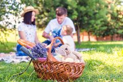 Picnic basket with food. On the green grass. Happy young family in the background Stock Images