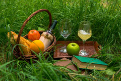 Picnic basket with food, wine and books on a green grass Stock Photography