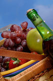 Picnic Basket with Fruit. Against blue sky with wine stock images