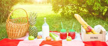 Picnic basket, fruit, juice in small bottles, apples, milk, pineapple summer, rest, plaid, grass Copy space Banner stock image