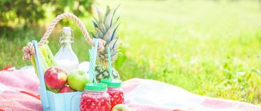 Picnic basket, fruit, juice in small bottles, apples, milk, pineapple summer, rest, plaid, grass Copyspace Banner royalty free stock photography