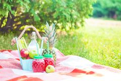 Picnic basket, fruit, juice in small bottles, apples, milk, pineapple summer, rest, plaid, grass Copyspace stock image