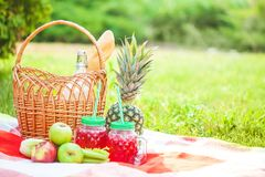 Picnic basket, fruit, juice in small bottles, apples, milk, pineapple summer, rest, plaid, grass Copy space. Picnic basket, fruit, juice in small bottles, apples stock photos