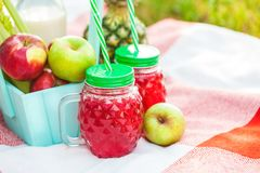 Picnic basket, fruit, juice in small bottles, apples, pineapple summer, rest, plaid, grass Copyspace stock photography