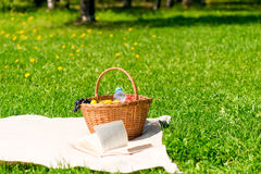 Picnic basket with fruit on a plaid in the park. Picnic basket with fruit on a plaid in the summer park Stock Image
