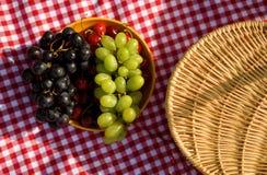 Picnic basket and fruits. Checkerboard cloth with picnic basket and fruits Stock Images