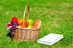 Picnic basket with fruits and book Royalty Free Stock Images