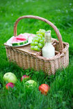 Picnic basket with fruits and bottle of wine on green grass Royalty Free Stock Image