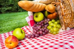 Picnic Basket with fruits and bread. Basket picnic picnic basket color red background colorful Stock Photos