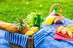 Picnic basket with fruits, bread and bottle of Royalty Free Stock Photography
